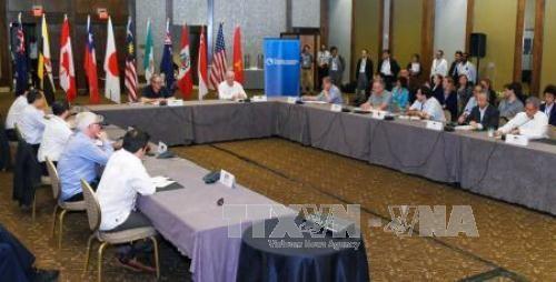 Đàm phán cấp bộ trưởng về TPP lại lỡ hẹn ảnh 1