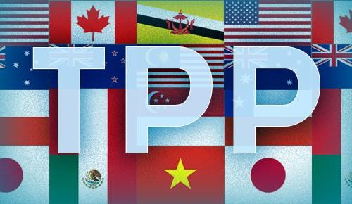 Cơ hội từ TPP không tự đến ảnh 1