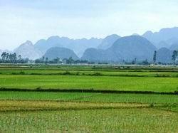 Đề án nâng cao năng lực quản lý đất đai ảnh 1
