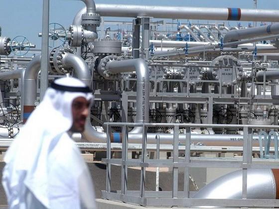IEA: Nhu cầu dầu mỏ thế giới sẽ chững lại ảnh 1