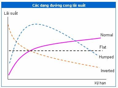 Đường cong lãi suất và các dạng phổ biến ảnh 2