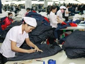 Xuất khẩu dệt may 2013 đạt 19 tỷ USD là khả thi ảnh 1