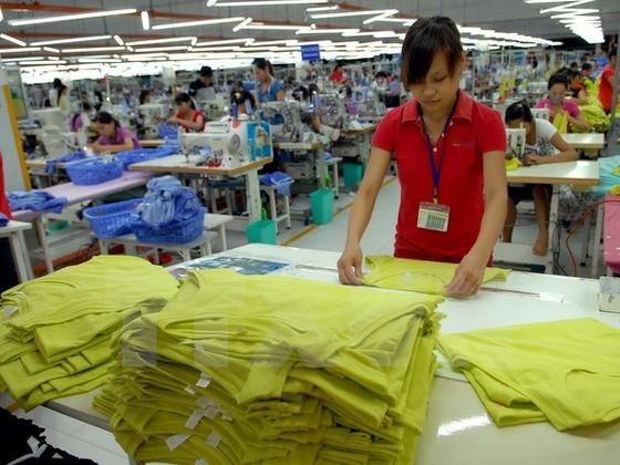 Việt Nam ứng phó nhập siêu trở lại trong 2015 ảnh 1