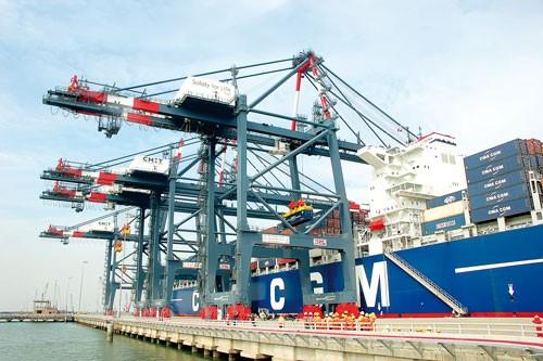 Kinh doanh cảng biển: Tự ta hại mình ảnh 1