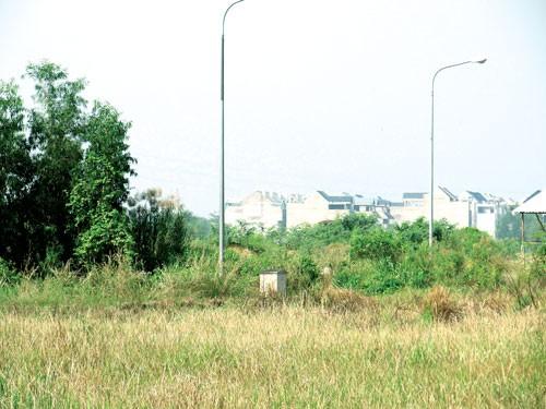Dự án Phú Hữu: Thiệt hại do văn bản tréo ngoe ảnh 1