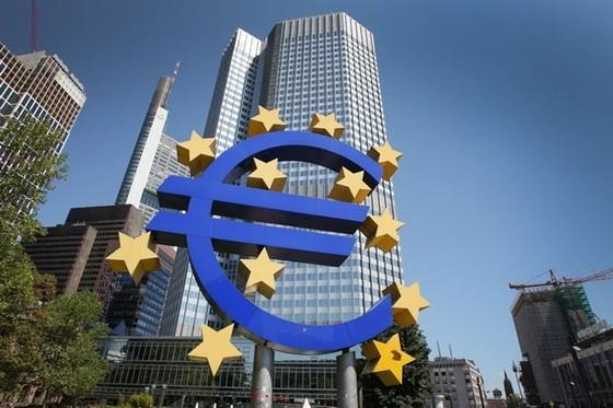ECB tăng cường giám sát khối ngân hàng ảnh 1