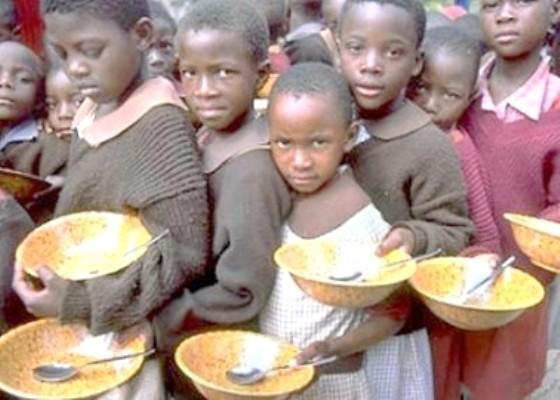Thế giới lãng phí 30% lương thực/năm ảnh 1