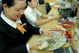 Nguồn vốn ngoại tệ sẽ bị thu hẹp ảnh 1