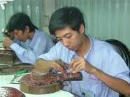TPHCM: Ngành kim hoàn thiếu lao động lành nghề ảnh 1