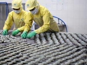 Hơn 29.000 tỷ đồng phát triển ngành thủy sản ảnh 1