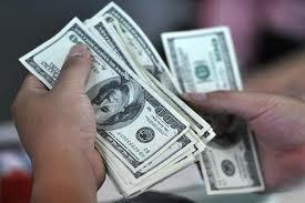 Tiền gửi ngoại tệ giảm ảnh 1