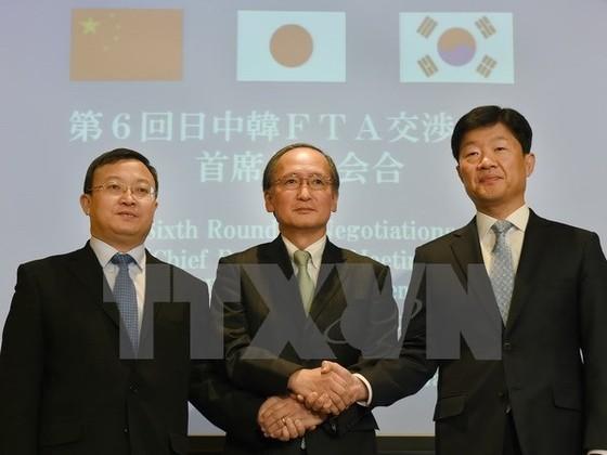 3 nền kinh tế lớn nhất châu Á đàm phán FTA ảnh 1
