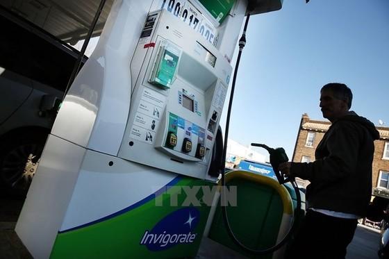 Nga-Saudi bàn cắt giảm sản lượng dầu ảnh 1