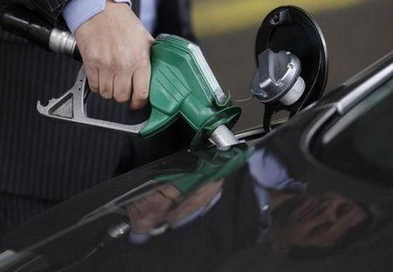 WB dự báo giá dầu duy trì ở mức thấp ảnh 1
