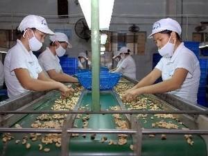 Việt Nam tham gia vòng đàm phán 16 về TPP ảnh 1