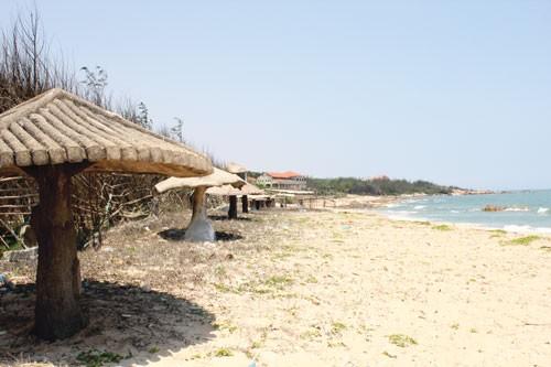 DA cảng Kê Gà: Trách nhiệm lớn thuộc tỉnh Bình Thuận ảnh 1