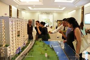 Khai trương căn hộ mẫu dự án Scenic Valley ảnh 1