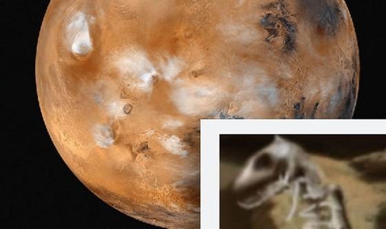 NASA phát hiện hóa thạch khủng long trên sao Hỏa? ảnh 1