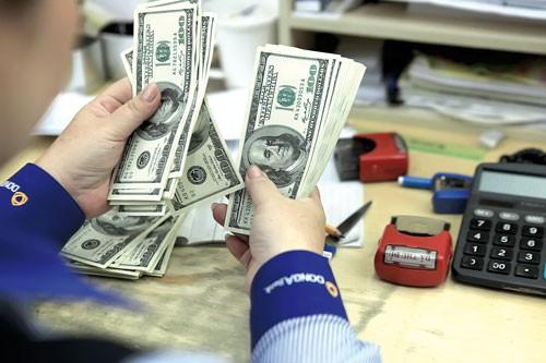 Lãi suất USD giảm không ảnh hưởng tiết kiệm kiều hối ảnh 1