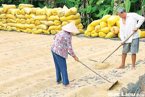 Tăng sức cạnh tranh nông nghiệp ảnh 1