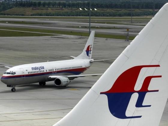 Rộ tin tìm thấy mảnh vỡ nghi của MH370 ảnh 1