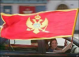 Montenegro là thành viên 154 của WTO ảnh 1