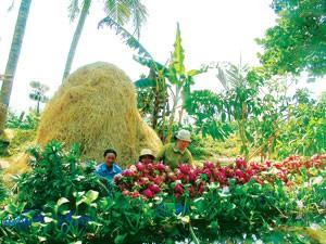 Fetival Biển 2011: Nha Trang - Biển hẹn ảnh 4