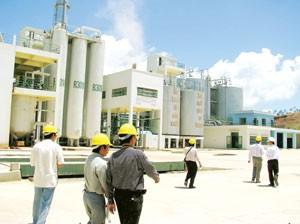 Xăng ethanol Việt Nam ảnh 1