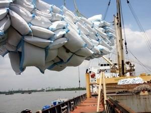 2011: Dự báo xuất khẩu gạo đạt 7,5 triệu tấn ảnh 1