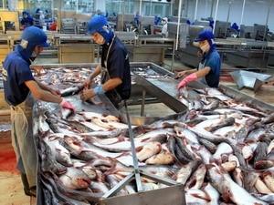 ĐBSCL xuất khẩu cá tra đạt 1,4 tỷ USD ảnh 1
