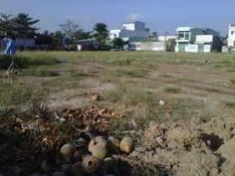 TPHCM: Cho thuê đất theo giá thị trường ảnh 1