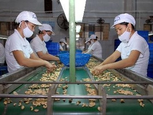Xuất khẩu nông, lâm, thủy sản ước 8 tỷ USD ảnh 1