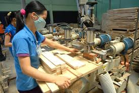 TPHCM nỗ lực lên phương án tái cấu trúc kinh tế ảnh 1