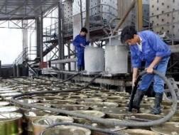 Việt Nam-Nhật Bản hợp tác quản lý rủi ro hóa chất ảnh 1