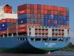 Chưa thực hiện cảng container quốc tế Vũng Tàu ảnh 1