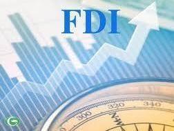 TPHCM: 7 tháng hút 292 triệu USD vốn FDI ảnh 1