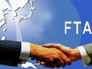 Hàn Quốc -Việt Nam đàm phán FTA ảnh 1
