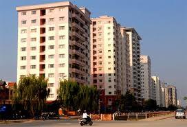 Hà Nội xử lý 260 trường hợp vi phạm đất đai ảnh 1