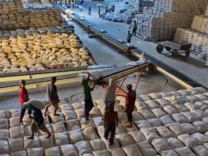 Indonesia sẽ nhập 300.000 tấn gạo của Việt Nam ảnh 1