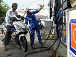 2011: Petrolimex lỗ 2.604 tỉ đồng ảnh 1