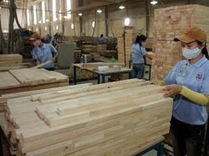 Giải pháp thị trường đồ gỗ bền vững ảnh 1
