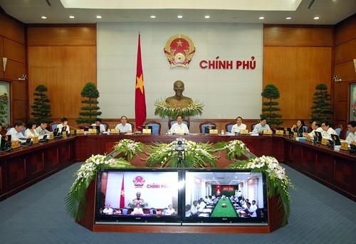 Chính phủ họp phiên thường kỳ tháng 6/2013 ảnh 1