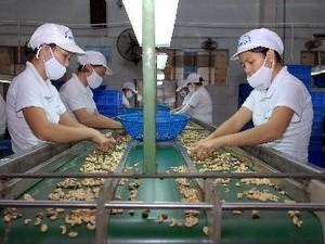 Xuất khẩu nông lâm thủy sản đạt gần 15,6 tỷ USD ảnh 1