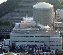 Nhật Bản cam kết bỏ năng lượng hạt nhân ảnh 1