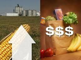 WB cảnh báo giá lương thực sắp đạt kỷ lục ảnh 1