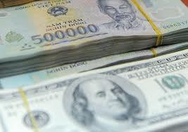 Khai báo tiền mặt ngoại tệ, VNĐ khi xuất, nhập cảnh ảnh 1