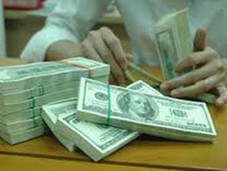 Ngân hàng Nhà nước đã mua vào 4 tỷ USD ảnh 1