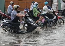 TPHCM: 16.000 tỷ đồng ứng phó biến đổi khí hậu ảnh 1