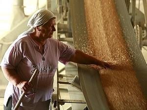 Nga nối lại xuất khẩu ngũ cốc ảnh 1