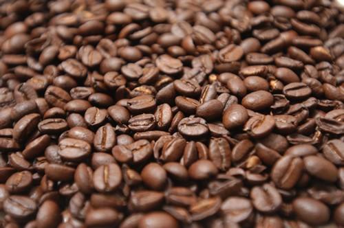 Năm 2011: Có thể xuất khẩu 1,3 triệu tấn cà phê ảnh 1